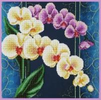 Орхидеи. Винтаж