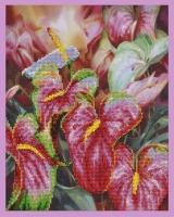 Квітка фламінго